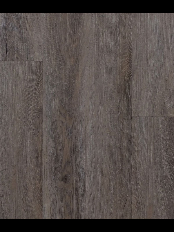 PVC Gelasta River Oak Pearl Grey